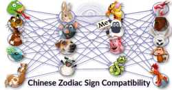 Is Your Chinese Zodiac Sign Compatibility Excellent For Love?
