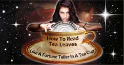 How To Read Tea Leaves Like A Fortune Teller In A Tea Cup
