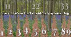 Life Path with Birthday Numerology