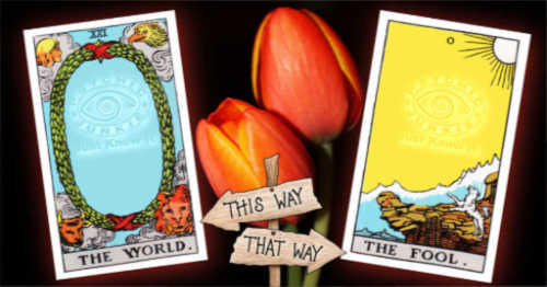 The Tarot Junkie - Are Your Articles Better Seen Here?