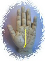 Palmistry Fate Line