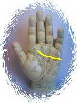 Palmistry Heart Line