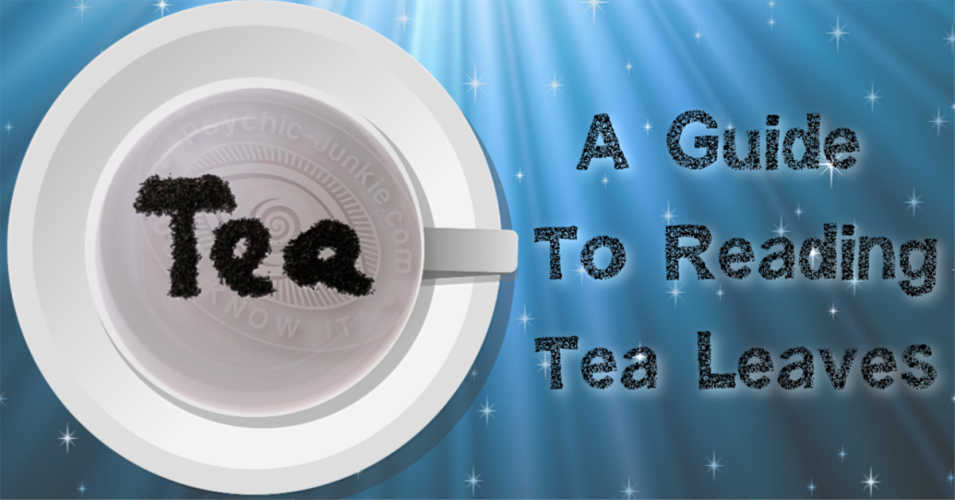 How To Start Reading Tea Leaves Successfully