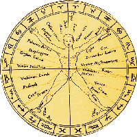 horoscope junkie wheel