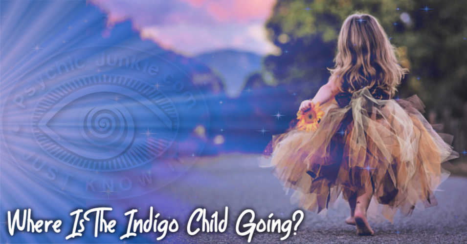 About The Indigo Child